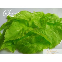 Precut Leaves - Rose Green