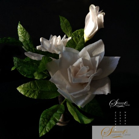 FaceBook Live Lesson  - 06.05.20 - Wafer paper Gardenia and foliage