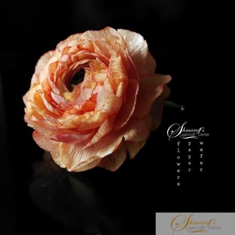 FaceBook Live Lesson  - 19.06.20 - Wafer paper Ranunculus