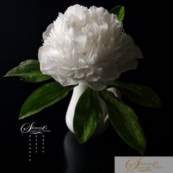 FaceBook Live Lesson  - Wafer paper free form Peony