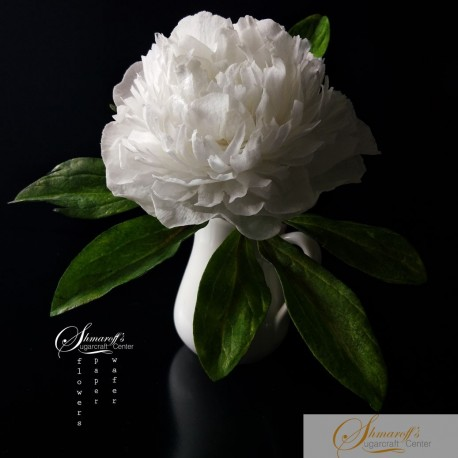 FaceBook Live Lesson  - 27.07.20 - Wafer paper free form Peony