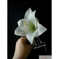 FaceBook Live Lessons - Amaryllis  - wafer paper flowers with Petya Shmarova