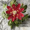 Zoom Lesson - Tropical Escape Wafer paper flowers with Petya Shmarova