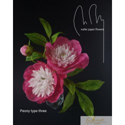 Wafer paper Peony  Type 3 - Video Lesson