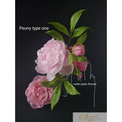 Wafer paper Ultimate Peony  Video Lesson