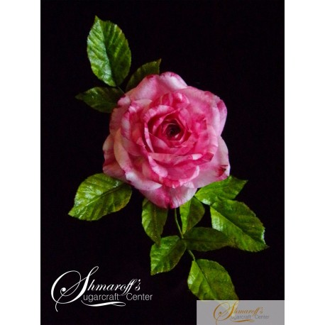 Wafer Paper Flower Rose Tutorial
